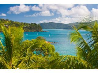 Hamilton Island BeachFront - Frangipani204 - 3 Bed