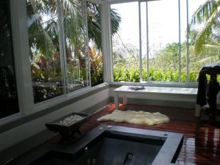 Jacuzzi off the Master bedroom.