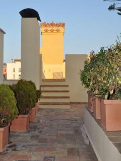 Can Felip_Apartment 2_Terrace