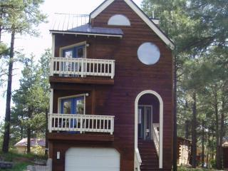 House in The Trees, Pagosa Springs