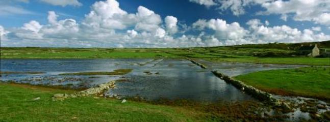 Carentan Marshland