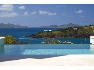 Oceana luxury  6 bed villa Great Cruz St john USVI