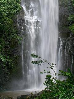 The road to Hana is known for tropical scenes like Wailua Falls shown here.