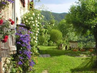 'Le Pichet'for 2-4 pers. Charming home/garden in mountain hamlet, UK TV winner., holiday rental in Ustou