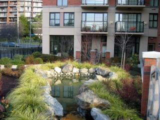 Economical Great downtown condo/month minimum, Victoria