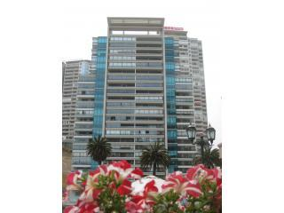 Luxurious 2 bedroom, 2 bath condo in Viña del Mar