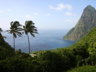 The Pitons Stargroves - overlooking the Pitons