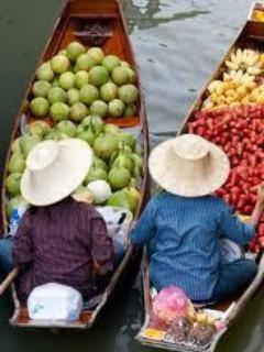 Take a trip to the floating markets