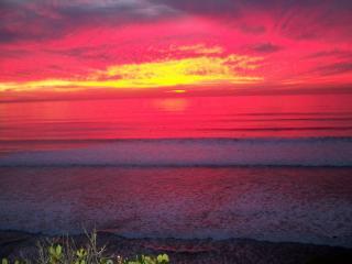 Waves are fuschia, pink, purple, wow!