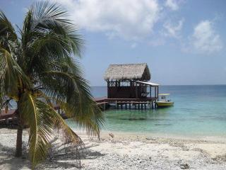 Big Rock Cabana- Private Beach, Dive Boat, Captain, Utila