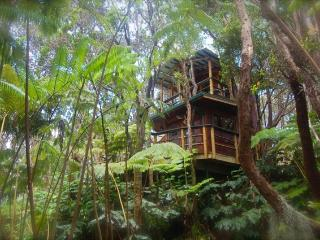 Exotic Treehouse at Kilauea Volcano on Big Island, Volcán
