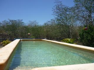 Large lap pool