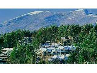 Stowe Vt's Theatre in the Woods-Fun for All