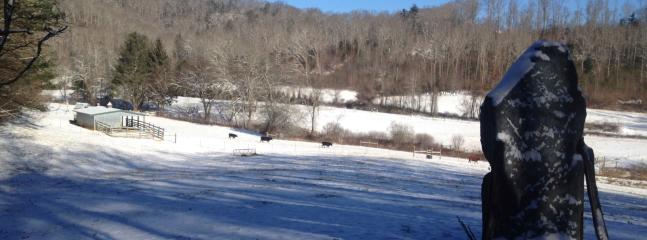 Sometimes it snows on Cloud 9 Farm