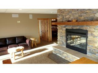 Lower Level Fireplace