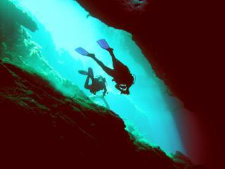 Cenotes Diving
