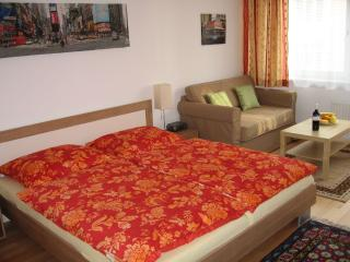 Cozy Studios - directly City Center - near Opera !, Vienna