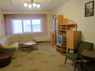 Grand Central 1 Apartment Sibiu
