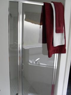 Double walk in shower master bath