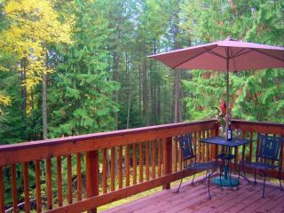 Large Private Deck with BBQ with Lovely Forrest Views