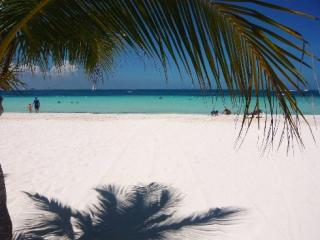 Beachclub, just 1o Min from Villa Maya
