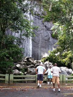 Guests at a Waterfall in the Rainforest