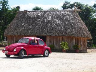 *Private House* Colonial Beach Hacienda Antigua Villa
