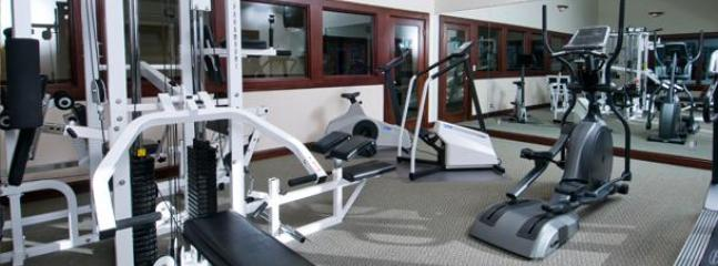 Workout Facility in clubhouse