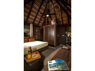 Palapa with High Ceiling