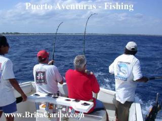 Puerto Aventuras diepzeevissen