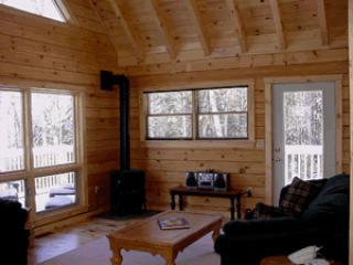 Living Room with gas wood stove
