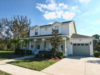 Platinum Collection - Trafalgar Villa, Kissimmee