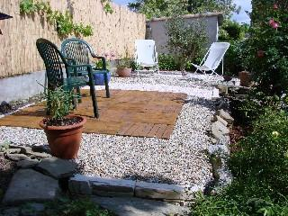Private back sun garden with olive tree