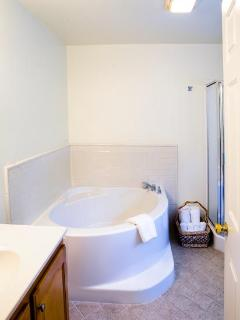 Master bathroom includes a spacious soaker tub and glass enclosed walk-in shower.