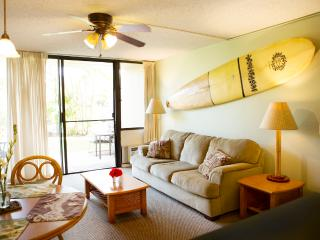 SPECIAL:  Great Maui Vista condo- only $104/nt for avail nights in April!
