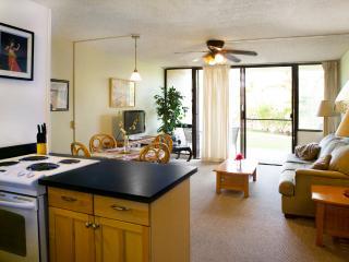 Tropical living room and lanai