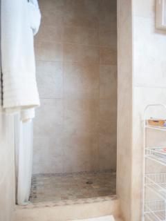ENCORE SUITE BATHROOM SHOWER