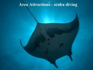 Area Attractions - scuba diving
