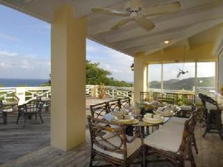 Estate Belvedere - Villa with pool, blends old world elegance with modern conveniences, St. Croix