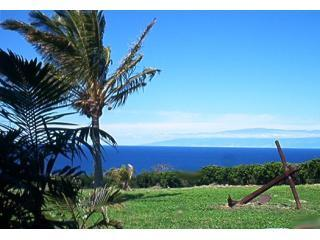 Awhalecrossing.com Vacation Rental, vacation rental in Hawi