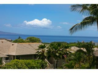 Great Ocean View   Family Friendly GC#42, Wailea