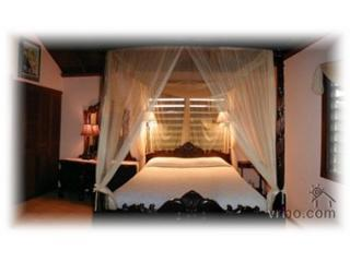 Tropical Orchid Queen Size Bed