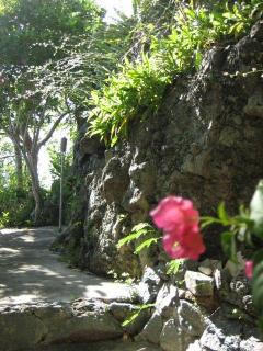 Tropical Gardens Path to ocean view