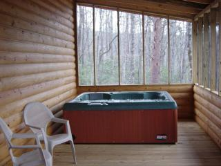 Screened Private Back Porch with Hot Tub