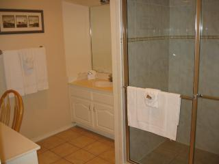 Second bathroom with large walk-in shower
