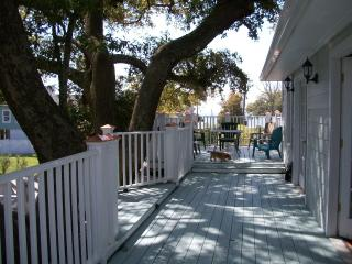 Large Live Oak trees with expansive deck built around them