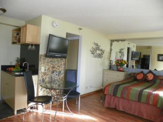 Awesome Studio,Great Location,Huge Saving!, vacation rental in Oahu