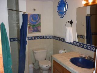 Downstairs Apt. bathroom