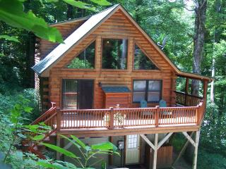 Tall Trees Cabin Mountain Retrete weekend skiing special $$$, Maggie Valley