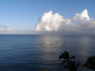 Looking North from the lanai